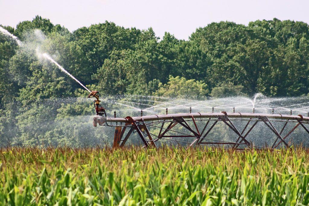 farm-4421270_1920