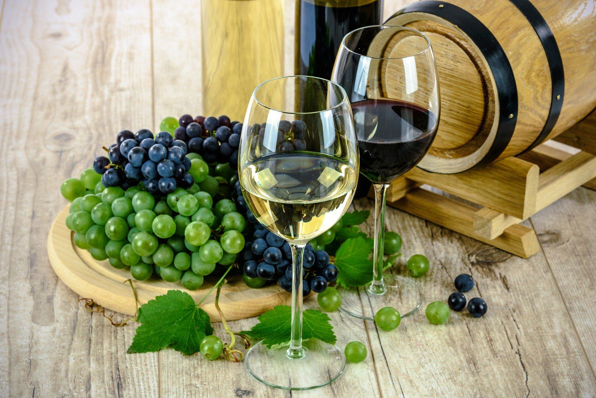 wine-1761613_1920